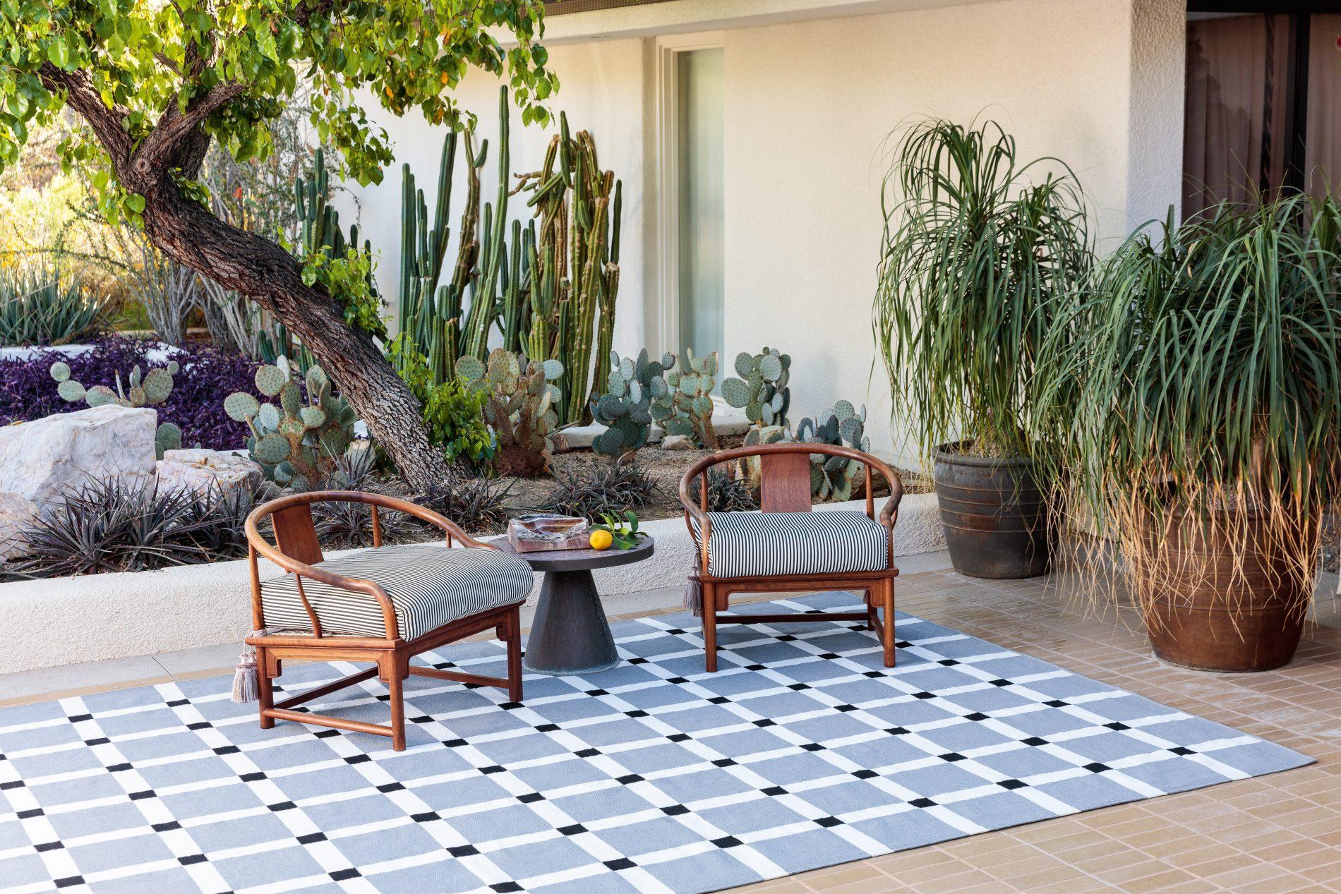 Außenbereich mit Kakteen, einem Baum und Topfpflanzen. In der Mitte ein hellblauer Teppich mit gleichmäßig weißen Linien horizontal und vertikal angelegt.